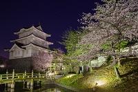 埼玉県 忍城と桜
