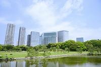 東京都 浜離宮恩賜庭園と汐留のビル群