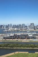 豊洲市場建設現場と晴海方面のビル群