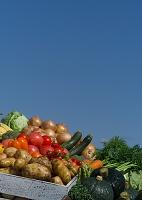 新鮮野菜と青空