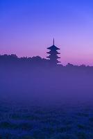 岡山県 総社市 備中国分寺