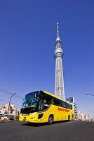 東京都 東京スカイツリーとはとバス