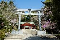 香取神宮 石鳥居 総門