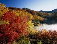 青森県 朝の地獄沼