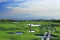 山形県 弥陀ヶ原湿原と鳥海山