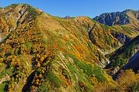 富山県 天狗平から奥大日岳(左の山)