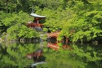 京都府 醍醐寺 弁天堂