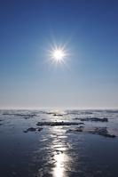北海道 知床 朝の流氷