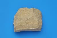 砂岩 堆積岩類 千葉県犬吠埼