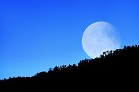 京都府 嵯峨小倉山と月