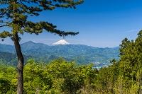 東京都 富士山