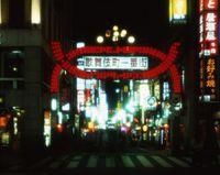 東京都 歌舞伎町の夜景