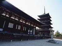 奈良県・奈良市 興福寺・東金堂と五重塔