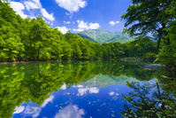 福井県 苅込池と白山