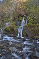 山梨県 清里 吐竜の滝 紅葉