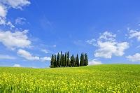 イタリア オルチャ渓谷 春