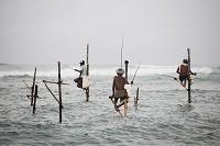 スリランカ セイロン 釣り人