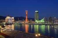 兵庫県 ポートタワーと神戸港の夜景