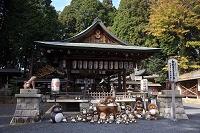 滋賀県 甲賀市 信楽町 新宮神社 信楽焼のタヌキ