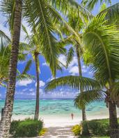 クック諸島 ラロトンガ