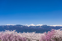 長野県 弘法山古墳園から見た北アルプス