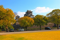 熊本城の宇土櫓と紅葉