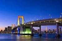 東京都 お台場レインボーブリッジのレインボーイルミネーション