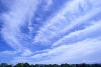 青空と筋雲と緑の山並み