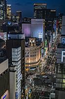 銀座のビル群と街並みの夜景