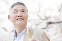 桜を見上げるシニアの日本人男性