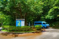 父島 小港海岸バス停 村営バス