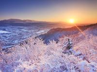 長野県 上田市 小牧城跡から望む新雪の樹林と神川合戦地と烏帽子...