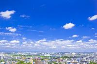 東京都 桜ヶ丘公園から見た街並