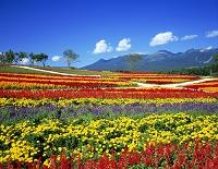栃木県 那須フラワーワールドと那須岳