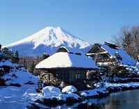 山梨県・忍野村 忍野八海より富士山