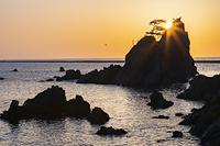 岩手県 朝の小袖海岸の兜岩