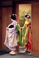 舞妓 祇園 京都府