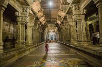 インド カンチープラム エーカンバラナータル寺院