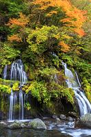 山梨県 吐竜の滝 紅葉