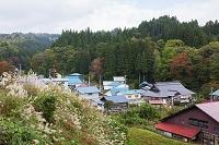 福島県 宮古地区