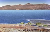 ケニア トゥルカナ湖