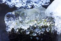 北海道 阿寒川の氷の造型