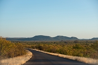 南アフリカ クルーガー国立公園 道路