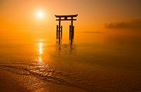 滋賀県 白髭神社 朝陽
