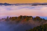 岡山県 朝の雲海と備中松山城