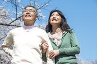 桜の下を散歩するシニア夫婦