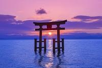滋賀県 白鬚神社の朝日