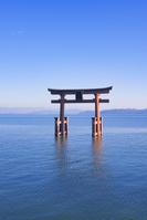 滋賀県 高島市 白髭神社