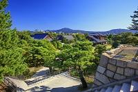 京都府 二条城 本丸庭園と本丸御殿