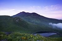 山形県  お花畑と鳥海山